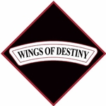 "101st Combat Aviation Brigade ""Wings of Destiny""(♦)"