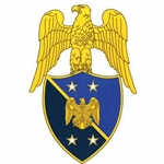 New Aides Insignia