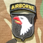 Patch, 101st Airborne with Airborne Tab, Error