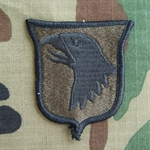 tch, 101st Airborne Division Without Airborne Tab, Subdued, Error