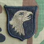 Patch, 101st Airborne Reversed Combat without Airborne Tab, Subdued