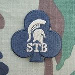 Special Troops Battalion, 1st Brigade Combat Team New Type MultiCam®