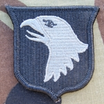 Patch, 101st Airborne Division Without Tab, Foliage Green ACU