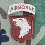 Patch, 101st Airborne Division With Tab, Desert