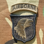 Patch, 101st Airborne Reversed Combat with Airborne Tab Subdued