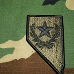 Patch, Nevada Army National Guard, MultiCam® with Velcro®