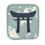 Helmet Patch, 187th Infantry Regiment, ACU, Type 5