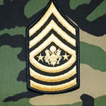 U.S. Army Enlisted Rank Insignia