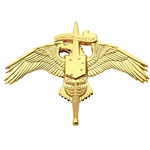 Marine Corps Forces Special Operations Command (MARSOC)