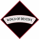 "101st Combat Aviation Brigade ""Wings of Destiny"""