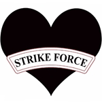 "2nd Battalion, 502nd Infantry Regiment (""Strike Force"") (♥)"