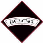 "3rd Battalion, 101st Aviation Regiment ""Eagle Attack""(♦)"