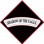 "6th Battalion, 101st Aviation Regiment ""Shadow of the Eagle""(♦)"