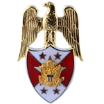 Branch Insignia, Officer, Aide