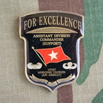 101st Airborne Division (Air Assault) Assistant Division Commander
