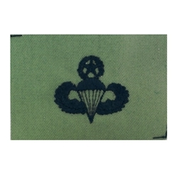 ABU Air Force Badge, Sew-On