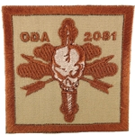 Patch, Operational Detachment Alpha (ODA) 2081 Desert - Spice Brown