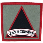 "Patch, 159th Combat Aviation Brigade ""Eagle Thunder"", Foliage Green"