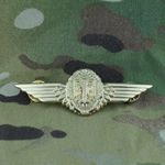 Badge, Bundeswehr, Aviation Badge, Gold, Only 1 In Stock