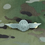 Badge, Bundeswehr, Aviation Badge, Silver, Only 1 In Stock