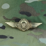 Badge, Bundeswehr, Parachutist Badge, Gold, Only 1 In Stock
