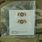 Branch of Service, Officers, Chemical Corps, G.I., Polished Brass