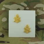 Branch of Service, Officers, Civil Affairs, G.I., Polished Brass