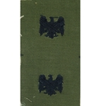 Insignia, Branch of Service, Officers, National Guard Bureau, MIL-DTL-15665-93A, Subdued Sew-on
