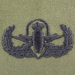 Subdued Sew-On, Explosive Ordnance Disposal Badge Basic