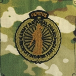 Patch, 11th Signal Brigade, MultiCam® with Velcro®