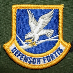 Beret Flash, Air Force Security Forces, Enlisted